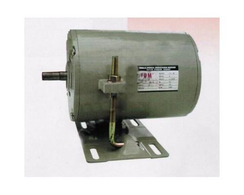 Индукционный мотор FSM 220В